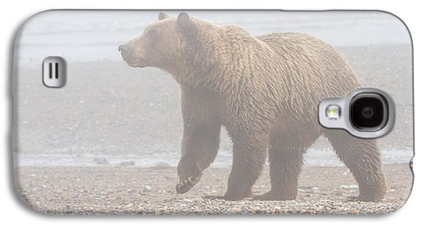 Bear In Fog Galaxy S4 Case