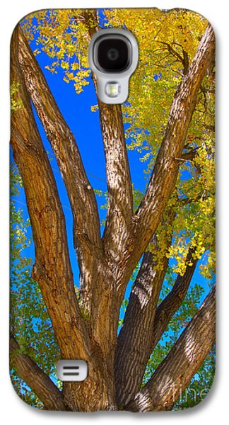 Beautiful Blue Sky Autumn Day Galaxy S4 Case by James BO  Insogna
