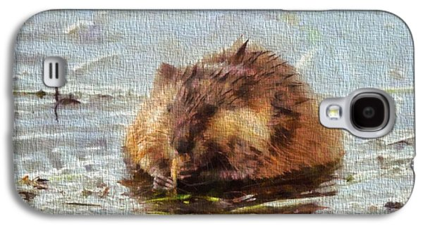 Beaver Portrait On Canvas Galaxy S4 Case