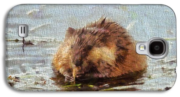 Beaver Portrait On Canvas Galaxy S4 Case by Dan Sproul