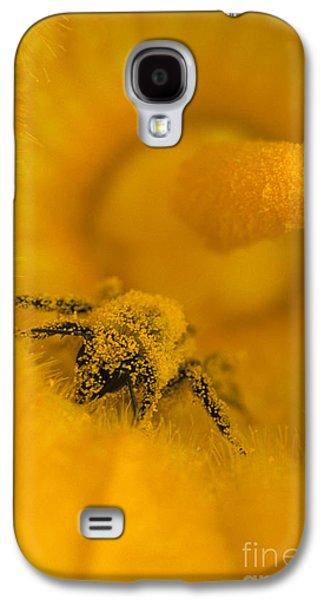 Bee In Pollen Galaxy S4 Case