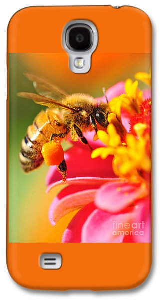 Bee Laden With Pollen Galaxy S4 Case