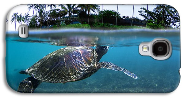 Turtle Galaxy S4 Case - Beneath The Palms by Sean Davey