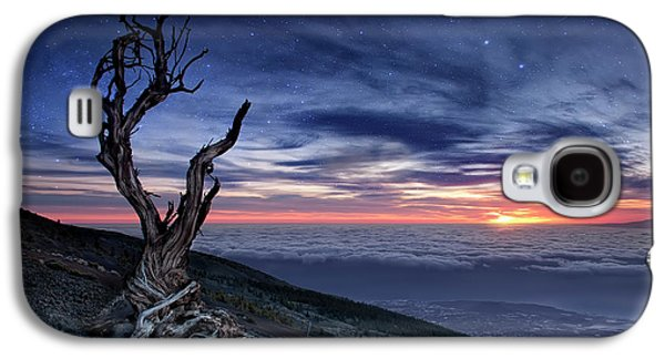 Canary Galaxy S4 Case - Beyond The Sky by Andrea Auf Dem