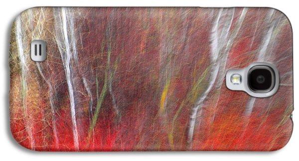 Birch Trees Abstract Galaxy S4 Case by Tara Turner