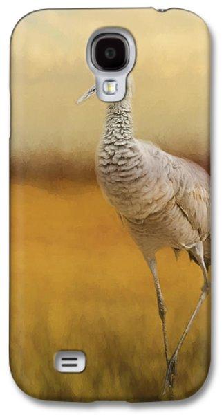 Bird Art - A Quiet Walk Galaxy S4 Case by Jordan Blackstone