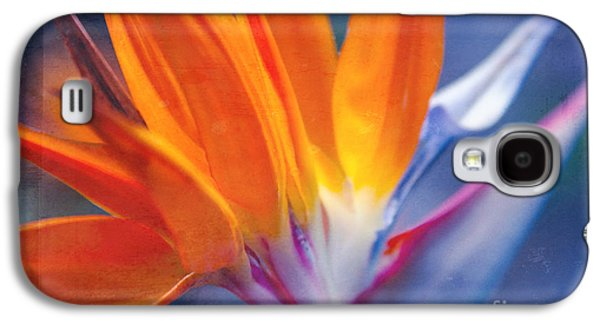 Bird Of Paradise - Strelitzia Reginae - Crane Flower Maui Hawaii Galaxy S4 Case by Sharon Mau