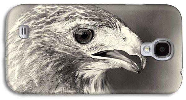 Bird Of Prey Galaxy S4 Case by Dan Sproul