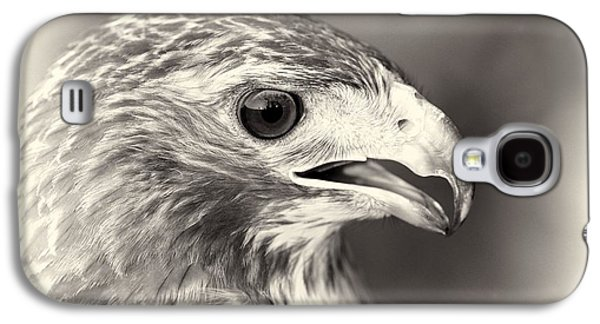 Bird Of Prey Galaxy S4 Case by Dan Sproul