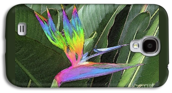 Bird Ow  Paradise Galaxy S4 Case by Suzette Kallen