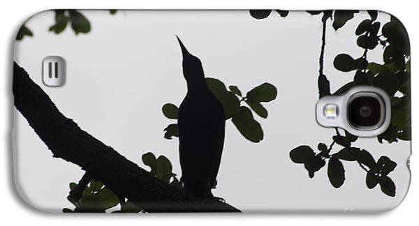 Bird - Grackle Twilight Moment - Luther Fine Art Galaxy S4 Case