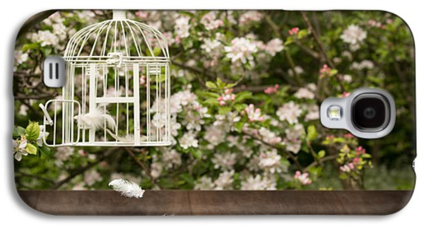 Birdcage With Feathers Galaxy S4 Case