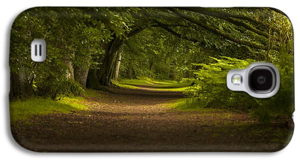 Birnam Woods Landscape Wall Art Galaxy S4 Case