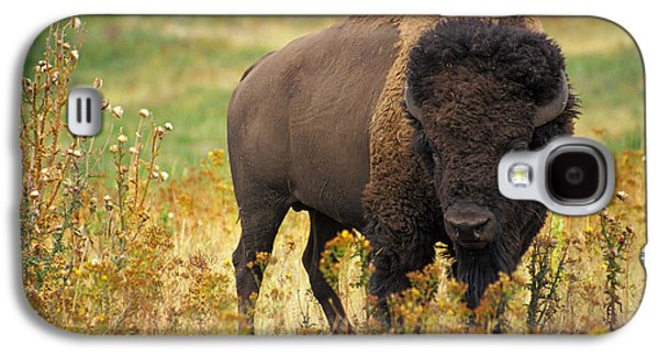 Bison Buffalo Galaxy S4 Case by National Parks Service