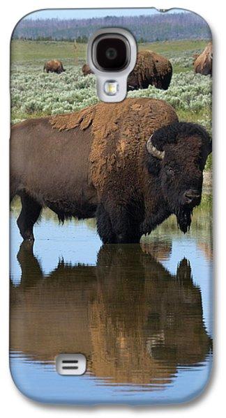 Bison Bull Reflecting Galaxy S4 Case by Ken Archer