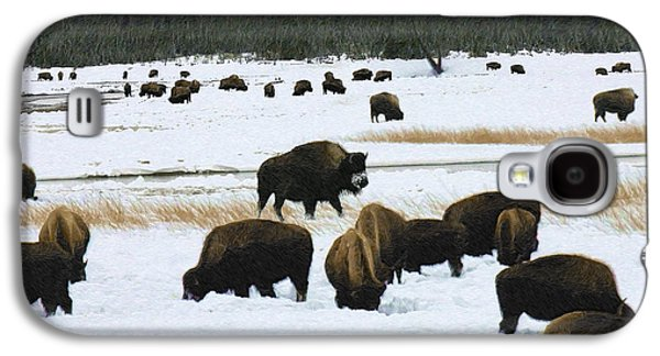 Bison Cows Browsing Galaxy S4 Case