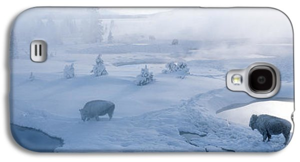 Bison West Thumb Geyser Basin Galaxy S4 Case by Panoramic Images