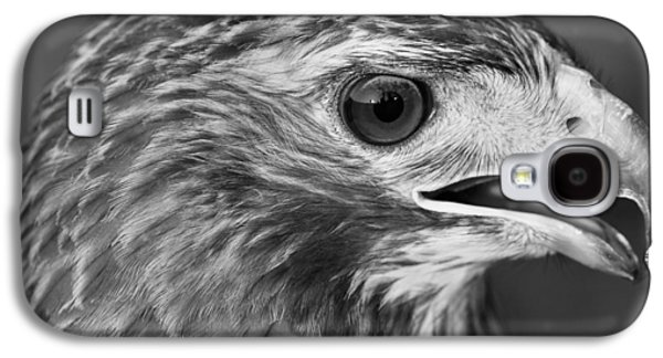 Black And White Hawk Portrait Galaxy S4 Case by Dan Sproul