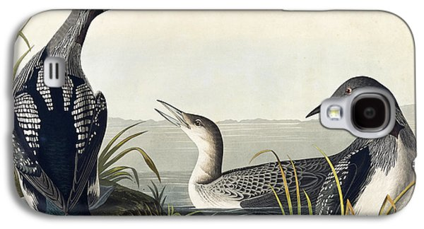 Black Throated Diver  Galaxy S4 Case by John James Audubon