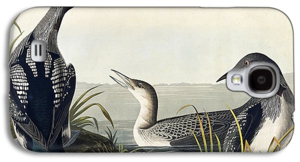 Black Throated Diver  Galaxy S4 Case