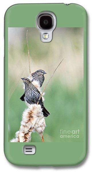 Blackbird Pair Galaxy S4 Case