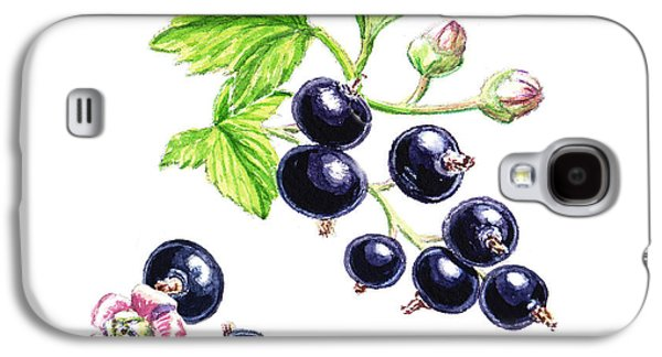 Blackcurrant Botanical Study Galaxy S4 Case by Irina Sztukowski