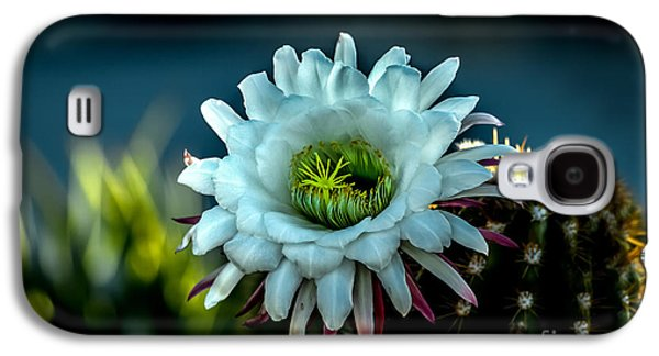Blooming Argentine Giant Galaxy S4 Case by Robert Bales