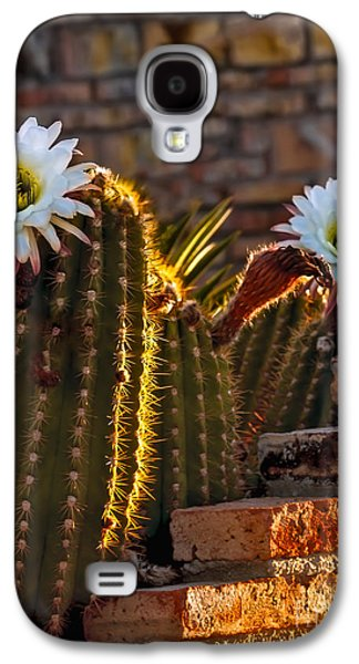 Blooming Cactus Galaxy S4 Case
