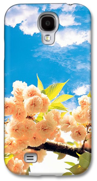 Blossoms Against Sky Galaxy S4 Case by Panoramic Images