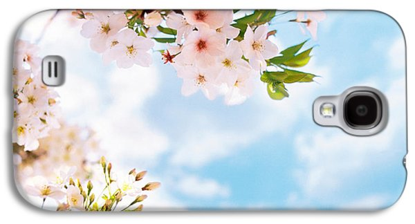 Blossoms Against Sky, Selective Focus Galaxy S4 Case by Panoramic Images