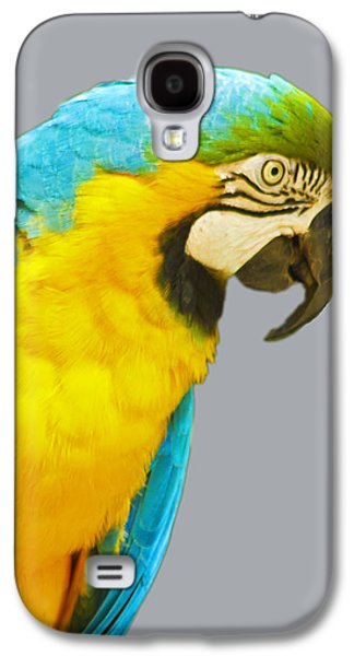 Blue And Gold Macaw Galaxy S4 Case by Bill Barber