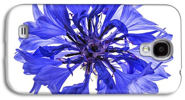 Blue Cornflower Flower Galaxy S4 Case by Elena Elisseeva