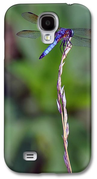 Blue Dragonfly On A Blade Of Grass  Galaxy S4 Case