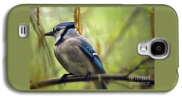 Blue Jay On A Misty Spring Day Galaxy S4 Case