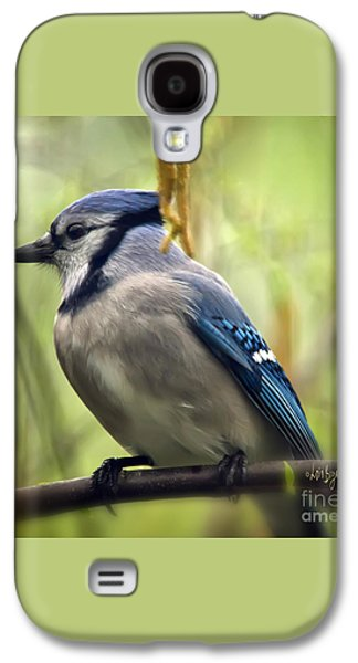 Blue Jay On A Misty Spring Day - Square Format Galaxy S4 Case by Lois Bryan