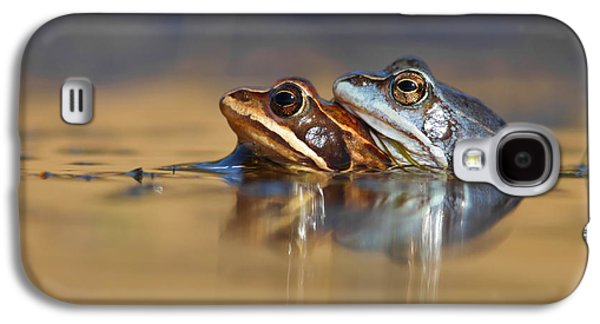 Blue Love ... Mating Moor Frogs  Galaxy S4 Case