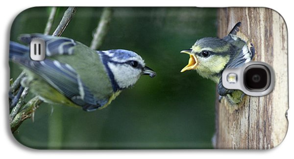 Blue Tit And Chick Galaxy S4 Case by Duncan Usher