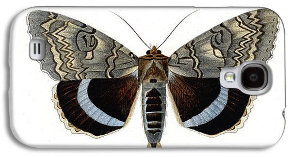 Blue Underwing Moth Galaxy S4 Case by Collection Abecasis
