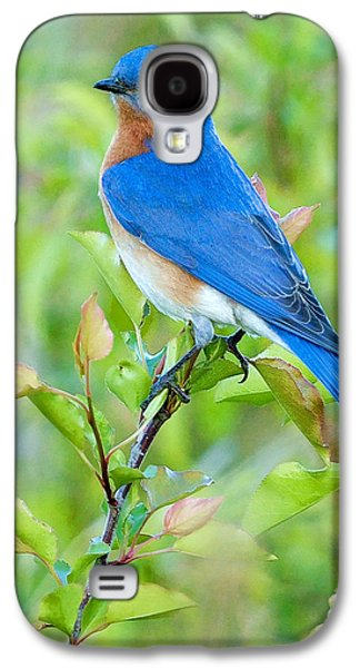 Bluebird Joy Galaxy S4 Case by William Jobes