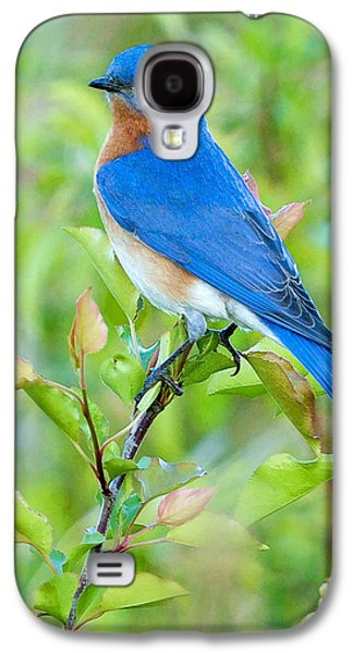Bluebird Galaxy S4 Case - Bluebird Joy by William Jobes