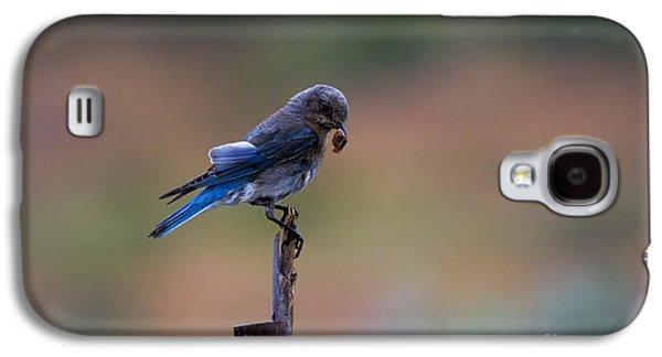 Bluebird Lunch Galaxy S4 Case by Mike  Dawson