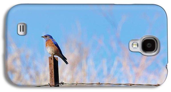 Bluebird On A Post Galaxy S4 Case by Mike  Dawson