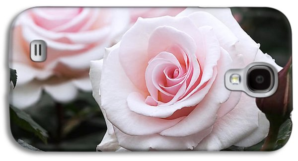 Blush Pink Roses Galaxy S4 Case by Rona Black