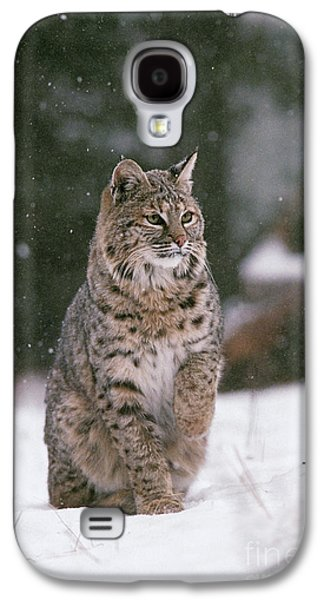 Bobcat Lynx Rufus In Winter Snow Galaxy S4 Case by Ron Sanford