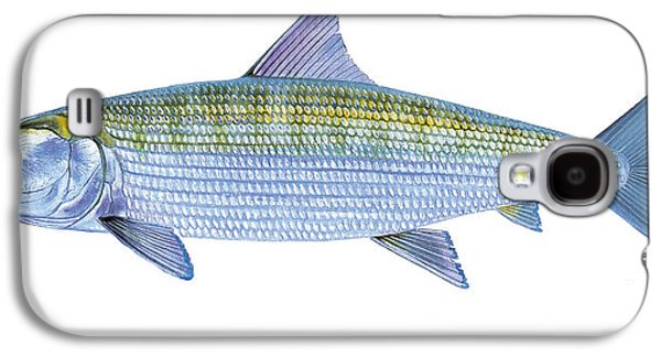 Drum Galaxy S4 Case - Bonefish by Carey Chen