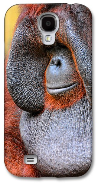 Bornean Orangutan Vi Galaxy S4 Case by Lourry Legarde
