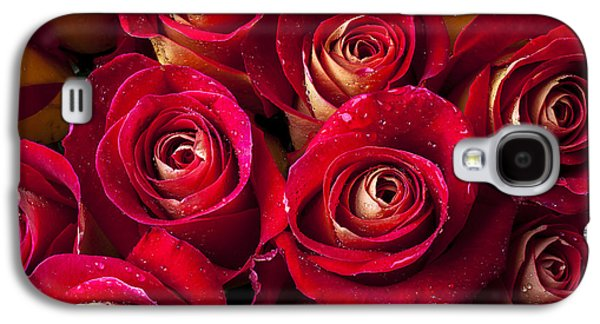 Rose Galaxy S4 Case - Boutique Roses by Garry Gay