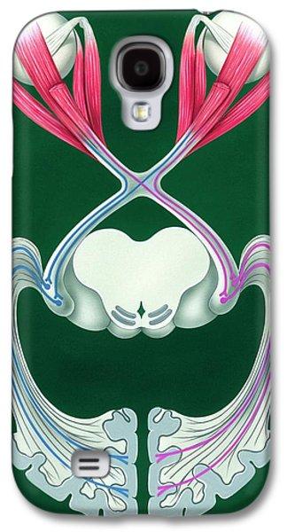 Brain's Visual Pathways Galaxy S4 Case by John Bavosi