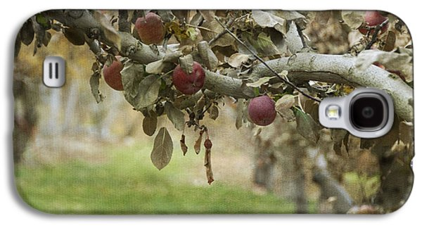 Branch Of An Apple Tree Galaxy S4 Case