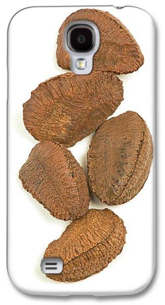 Brazil Nuts Galaxy S4 Case